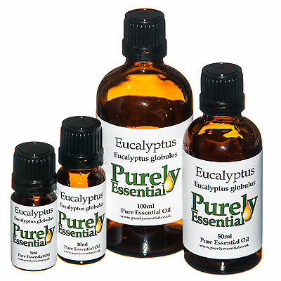 Eucalyptus Essential Oil 5ml 10ml 50ml 100ml, Pure & Natural, Purely Essential