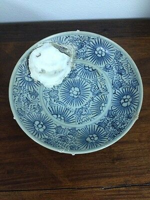"Diana Cargo Plate - 1816 ~2+ by 11"" Highly sought after @auction: Shell in plate"