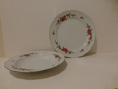 Mitterteich Bavaria Dinner Plate & Soup Bowl Delicate Rose Green Leaves   (S3