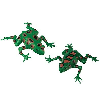 (2) Frog Squishimal Sensory Tactile Fidget Toy Occupational Therapy Autism ASD