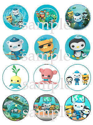 OCTONAUTS Edible CUPCAKE Image Icing Decoration Toppers 12 Assorted
