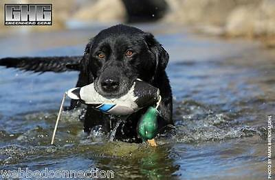 Avery Greenhead Gear GHG Dog EZ Bird ATB Mallard Training Bumper Dummy Drake