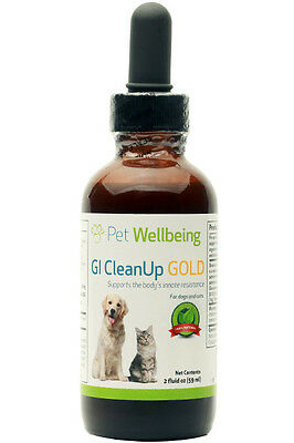 Pet Wellbeing GI CleanUp Gold for Dog Cat Worms Safe & Gentle - 2 fl oz (59 ml)