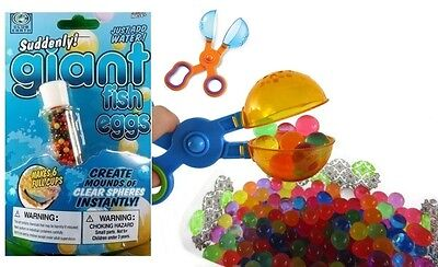 Suddenly Giant Fish Eggs Grow in Water Sensory Science Tactile Water Table