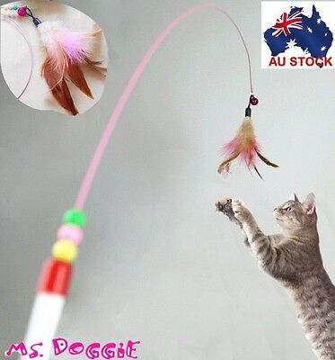 Cat Kitten Teaser Feather Toy Wire Chaser Wand with Bell Flying Bird  103cm Long