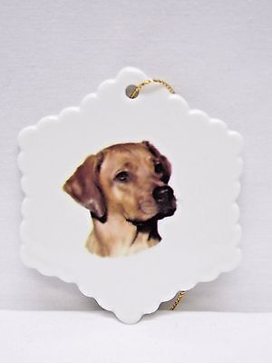 Rhodesian Ridgeback Dog Porcelain Christmas Tree Ornament Fired Head Decal-H