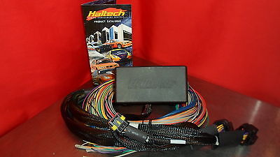 Haltech SPORT 1000  ps1000 FLYING LOOM HARNESS HT-041302