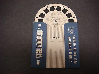 Sawyer's Viewmaster Reel,1958,Strange Animals of Australia and Africa,B 6152