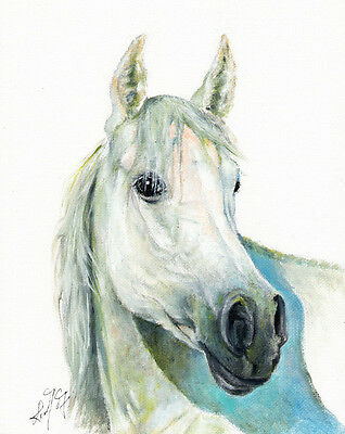 ★ Original Oil HORSE Portrait Painting PONY Artwork ARTIST SIGNED White Stallion