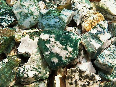 500 Carat Lots of Tree Agate Rough - Plus a FREE Faceted Gemstone