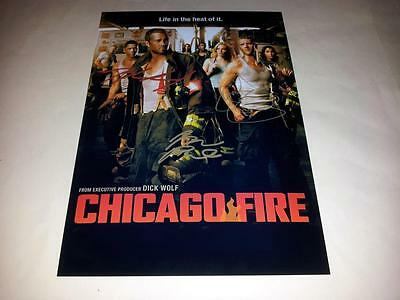 "Chicago Fire Pp Signed 12"" X 8"" Poster Jesse Spencer Taylor Kinney"