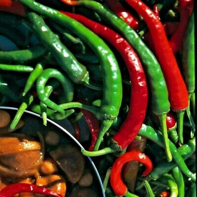 Hot Pepper - Cayenne / Chilli - Appx 200 seeds - Vegetable
