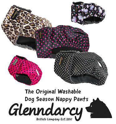 Glenndarcy Dog Season Nappy Pants | Size Large to XXXL | Washable