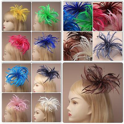 Ladies Looped Net And Feather Fascinators On Forked Clip With Brooch Pin