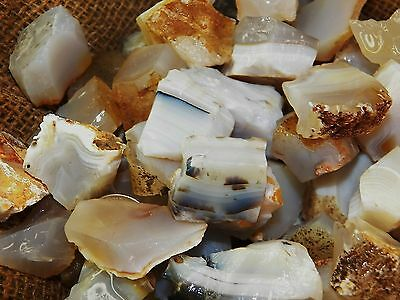 1000 Carat Lots of Agate Rough - Plus a FREE Faceted Gemstone