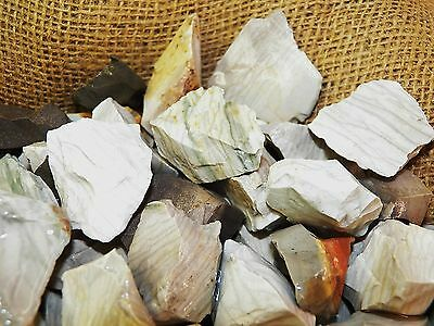 500 Carat Lots of Gray Jasper Rough - Plus a FREE Faceted Gemstone