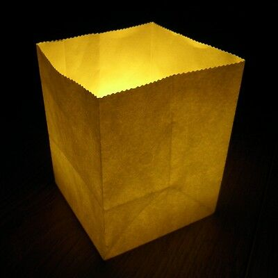 9cm x 7cm Small Plain Candle Bags - a pack of 10 white paper luminary lanterns