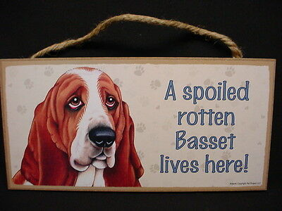 BASSET A Spoiled Rotten HOUND DOG Art Print SIGN wood HANGING WALL PLAQUE puppy