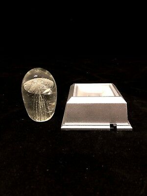 Clear Jellyfish Paperweight With  Clear Light Base