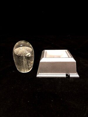 Clear Jellyfish Paperweight With Color Light Base