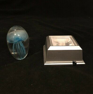 Blue Jellyfish Paperweight With Light Base