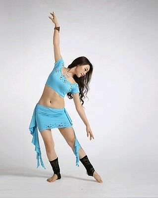2014  Brand New Belly Dance Costume Outfit Dancewear 2Pcs Top Skirt Summer