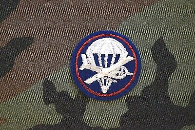 Authentic RARE US Army Paraglider Officer Color Military Patch