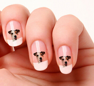 20 Nail Art Decals Transfers Stickers #104  Jack Russell dog -  peel & stick