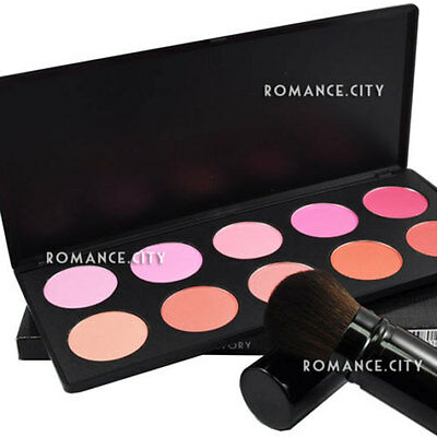 New Professional 10 Color Matte + Shimmer BLUSH Makeup Palette Set #613Y