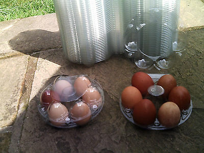 ROUND CLEAR PLASTIC NEST EGG BOXES flat top 10 20 30