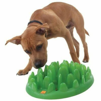 Northmate Green Mini Interactive Slow Food Bowl for Small Breeds & Puppies