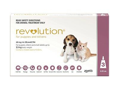 Revolution Flea & Worm Control for Puppies & Kittens - 3 pack
