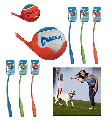 The Chuckit! Ball Launcher is a Great Exercise Toy for Dogs That Love To Fetch !