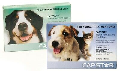 Capstar Fast Flea Knockdown Tablets for Cats and Dogs