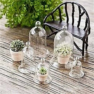 My Fairy Gardens Mini - Glass Cloches Set of 5 - Supplies Accessories
