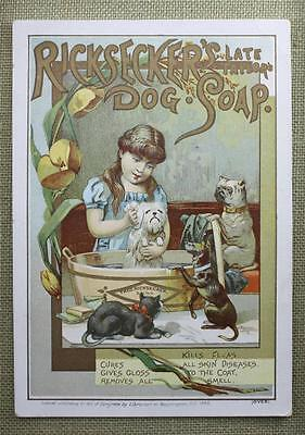 Litho Advertising Trade Card Ricksecker's Late Taylor's Dog Soap 1885