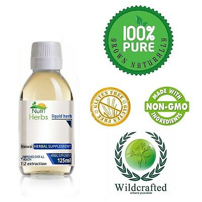 Andrographis Herb Andrographis paniculata  Non-Alcoholic Tincture 100ml FREE UK