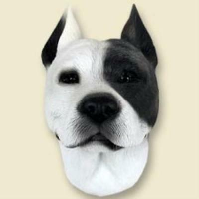 DHF65A Pit Bull Terrier White Doogie Head