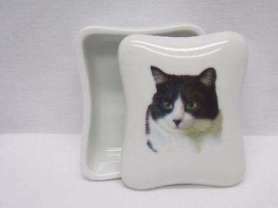 Black & White Cat Dresser or Trinket Box Porcelain Fired Head Decal on Top