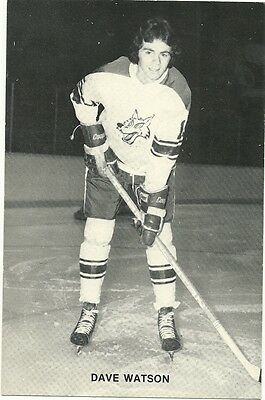 """4.25""""X6.5"""" Sudbury Wolves Tean Issued Cards from the late 1970's Dave Watson"""