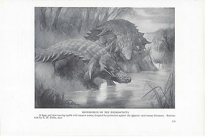 upstate dinosaur essay Dinosaurs are often brought up in the media and normal life and are also constantly referenced in relation to other animals and films but not many people actually know what a dinosaur is we will write a custom essay sample on.