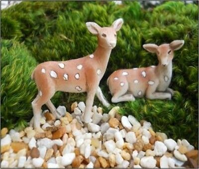 My Fairy Gardens Mini - Fawns Set of 2 - Supplies Accessories