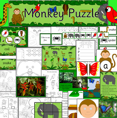 MONKEY PUZZLE story teaching resource on CD- EYFS, KS1, Jungle, animals