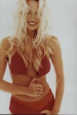 Pamela Anderson Sexy Red Bikini 4x6 Photo
