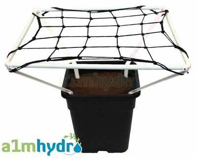 Scrog Line Pro 1.2 Plant Support Net Netting 60cm X 60cm Grow Tent Hydroponics