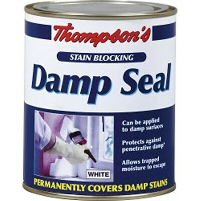 Thompson's Stain Blocking Damp Seal 2.5L Protection White Prevents Stains