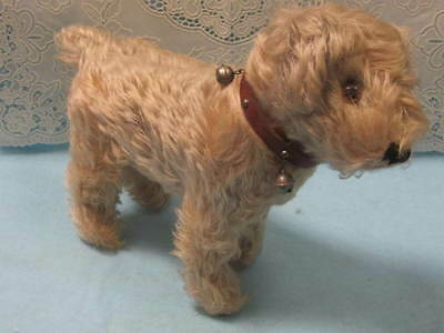 "RARE 9"" OLD VINTAGE Two Tone TERRIER DOG CURLY MOHAIR No LABEL"