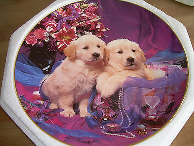Royal Doulton/Franklin Mint ltd ed Plate with CERT - RETRIEVER PUPPIES/DOGS