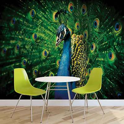 WALL MURAL PHOTO WALLPAPER PICTURE (630P) Peacock Art Abstract
