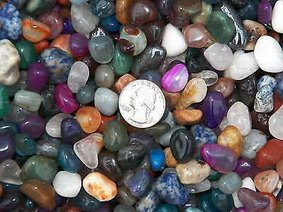 2000 Carat Lots of Size #4 Tumbled Polished Gemstones + A FREE Faceted Gemstone